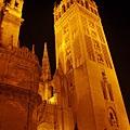 大主教教堂夜景