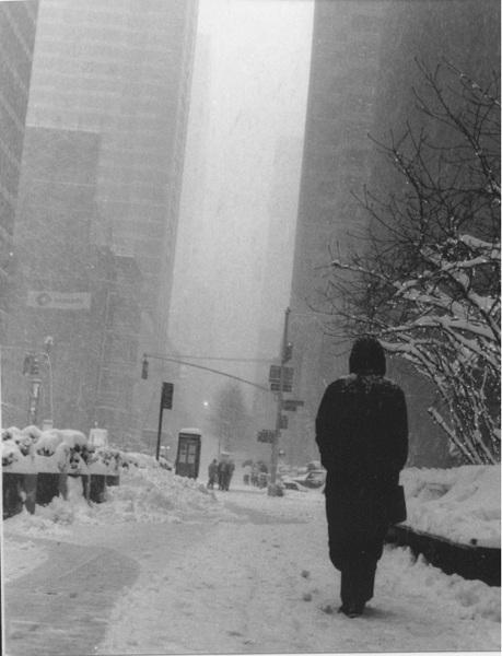 暴風雪的背影