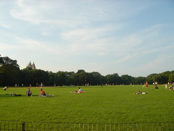 Central Park- Great Lawn