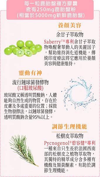 保健食品DM02-1-583x1024.jpg