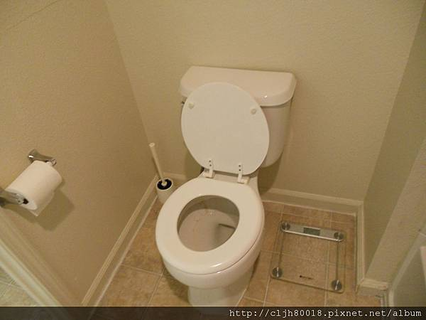Toilet and bathroom scale