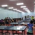 台中乒乓 桌球愛好者02.JPG