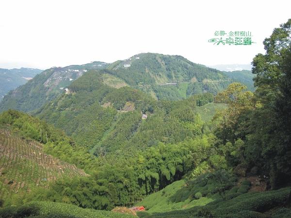 必勝登山-金甘樹山-07.jpg