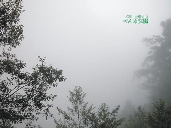 必勝登山-金甘樹山-24.jpg
