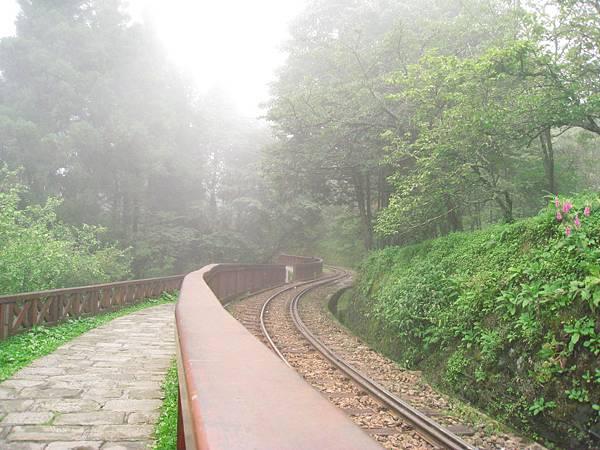 霧中的鐵道