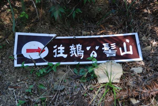 鵝公髻山 02.jpg