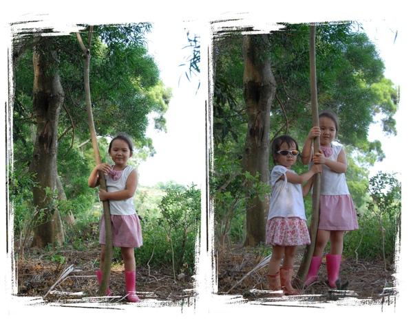 森林04.jpg
