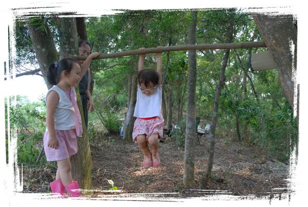 森林06.jpg