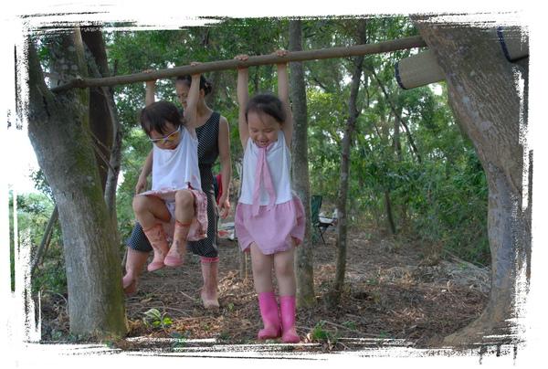 森林07.jpg