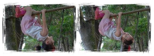 森林09.jpg