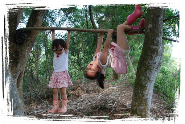 森林13.jpg