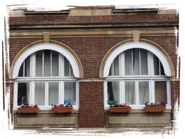 window 10.jpg