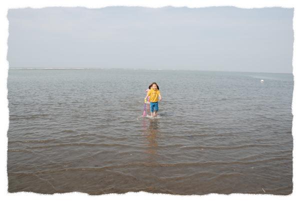 濕地 17.jpg