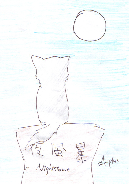 夜風暴2.jpg