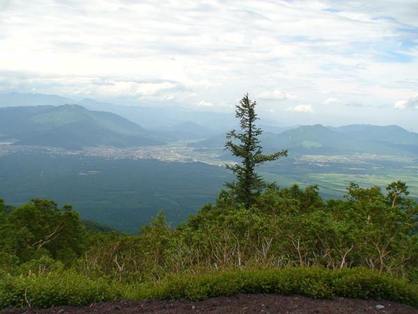 遠眺富士五湖