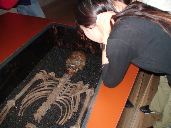 瓦薩號上出土的瑞典人骨骸