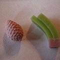每人分到2個干果子--松果與松針