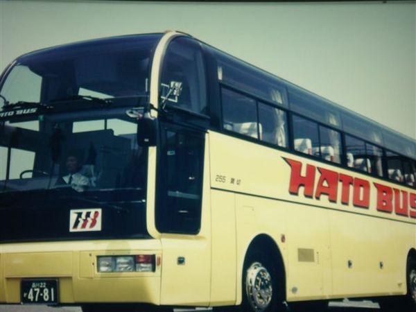 042鴿子巴士.JPG
