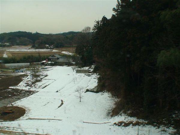 068積雪的千葉縣.JPG