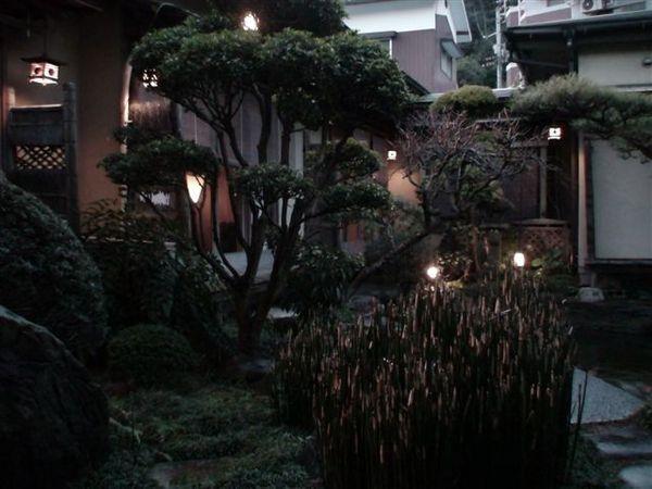 340庭院.JPG