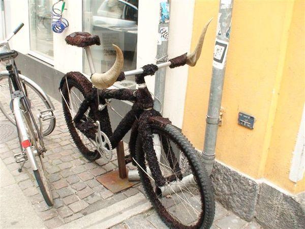 牛角腳踏車.JPG