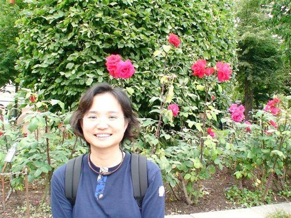 盛開的薔薇.JPG