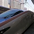 DSC_0510.JPG