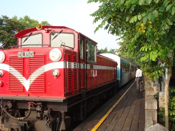 阿里山小火車進站