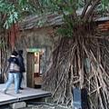 安平樹屋1