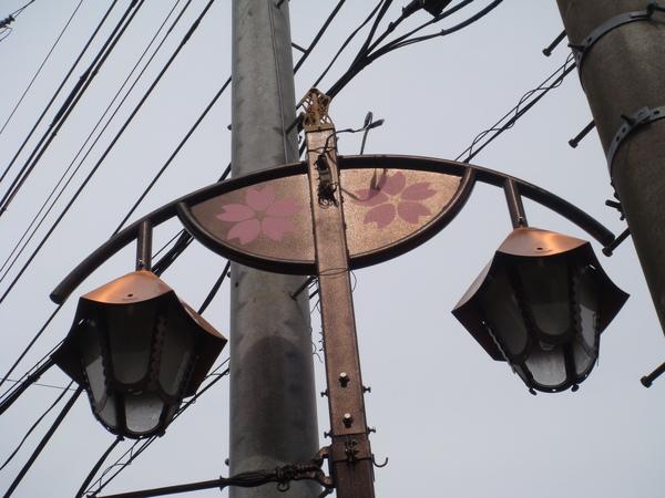 連路燈都很SAKURA