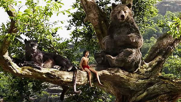 3056512-poster-p-1-want-to-vacation-like-mowgli-in-jungle-book-airbnb-has-treehouses-at-the-ready.jpg
