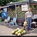 關渡宮賣椰子.jpg