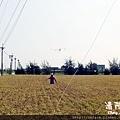 老鷹風箏3.JPG