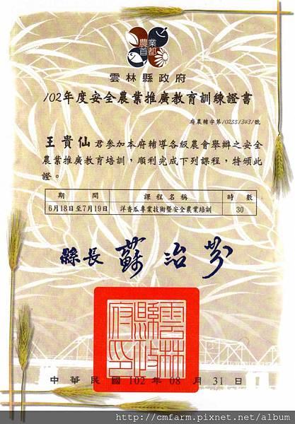 2013.6.18~7.19洋香瓜專業技術暨安全農業培訓證書.jpg