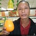 山東青島巨型柳橙 (2).JPG