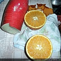 山東青島巨型柳橙 (6).JPG