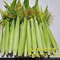 自然農法白龍王水果玉米筍07.jpg