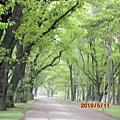 飯店內公園步道.JPG