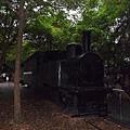 2011.10.羅東林業公園1.JPG