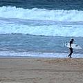 雪梨-邦黛海灘 03.JPG