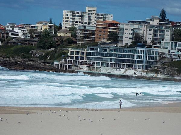 雪梨-邦黛海灘 07.JPG