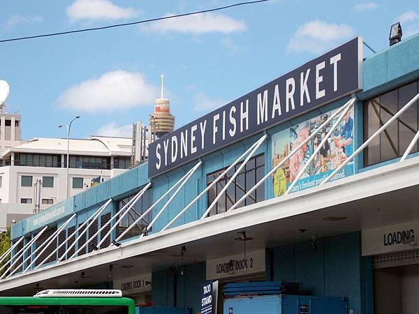 雪梨-雪梨魚市場 01.JPG