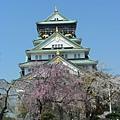 大阪-大阪城 西之丸庭園 03.JPG