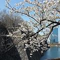 大阪-大阪城 西之丸庭園 14.JPG