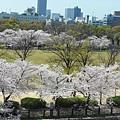 大阪-大阪城 西之丸庭園 15.JPG