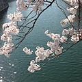 大阪-大阪城 西之丸庭園 17.JPG