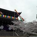 京都-八阪神社 01.JPG