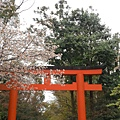 京都-八阪神社 03.JPG