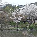 京都-八阪神社 04.JPG
