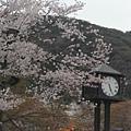 京都-八阪神社 06.JPG